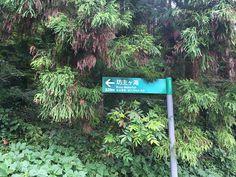 Hiking in Fukuoka: Mt. Kanayama and the Bozu Waterfall
