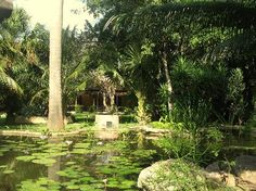 Hacienda Xcanatun: dans le jardin