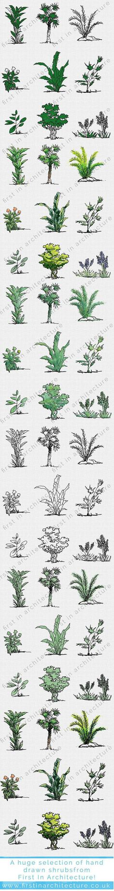 fia-bushes_plants-complete-2-1