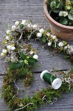 Use wire and make a corgi and dinosaur shaped moss wreath with other decor? Nordic Christmas, Christmas Diy, Xmas Decorations, Flower Decorations, Moss Wreath, Wire Wreath, Berry Wreath, Deco Nature, Spanish Moss