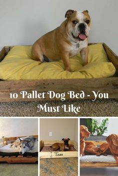 10 DIY #Pallet Dog Bed Designs | NewNist