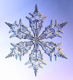 氷の結晶の写真。普段見ているそれからは想像もつかないような整った形をしている。シンメトリーでもあって美しい。