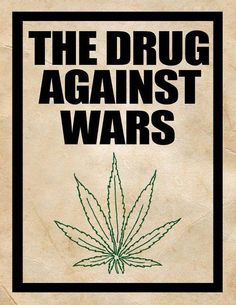 Drug Against Wars is not a drug but, a lowly herb. I know because I know drugs kill & my Cannabis does not. Endocannabinoid System, Puff And Pass, Medical Cannabis, Marijuana Facts, Cannabis Plant, Smoking Weed, Greed, Mary Janes, Herbs