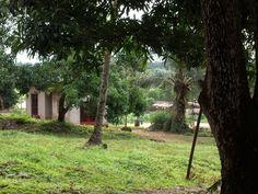 Beautiful Sierra Leone!