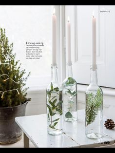 Glass bottles filled with water and branches as candlesticks- Glasflaschen gefüllt mit Wasser und Zweigen als Kerzenhalter Glass bottles filled with water and branches as candlesticks - Wedding Centerpieces, Wedding Table, Centerpiece Ideas, Greenery Centerpiece, Wedding Reception, Wine Bottle Centerpieces, Cheap Table Centerpieces, Winter Centerpieces, Deco Table Noel