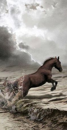 Black horse and the raging ocean waves of the thunderstorm. The majestic stallion & raging sea & the storm have power beyond our control.