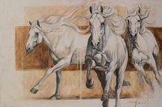 Yeguada Aimaran - Our Stallions