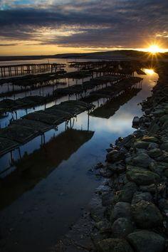 Coucher de soleil sur les parcs à huîtres de la Charente-Maritime | Charente-Maritime Tourisme #charentemaritime | #coucherdesoleil | #oyster | © Rémi Ferreira