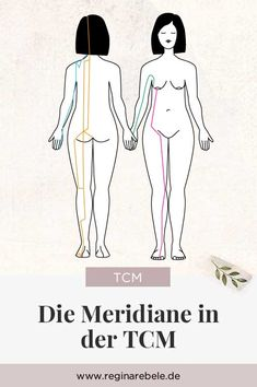 The meridians in the TCM - Each person has 12 main channels, which are assigned to an organ or functional group, and 8 so-call - Massage Tips, Fitness Workouts, Steady State Cardio, Functional Group, High Intensity Cardio, Acupuncture Points, Chakra Meditation, Qigong, Yin Yoga