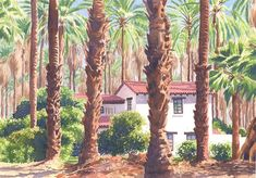 Painting - House Among Date Palms In Indio by Mary Helmreich , Landscape Art, Palm Trees, Watercolor Paintings, Artsy, Palms, Canvas Prints, Wall Art, House Styles, Artwork
