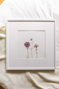 Pressed Flowers - How to Make a Flower Press and Display Pressed Flowers Easy Flower Crafts That Any Pressed Flowers Frame, Dried And Pressed Flowers, Pressed Flower Art, Flower Frame, Flower Crafts, Diy Flowers, Paper Flowers, Press Flowers, Art Floral