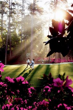 Masters week in Augusta, not into golf but could watch the Masters for the chill out 'ahhhhh' scenery every night