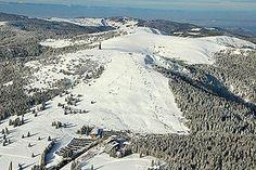 Luftaufnahme von Feldberg und Seebuck - Höhe1493 m ü. NHN