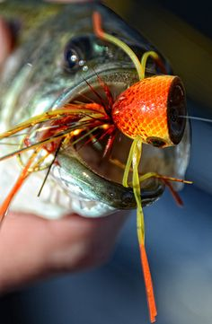 Fly Fish Food -- Fly Tying and Fly Fishing : Rainy's Foam Popper Bodies