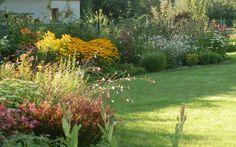 Prvodekádově sprnová kvetoucí zahrada…