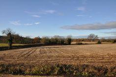 Views from Providence House #yorkshirecountryside #yorkshireliving #stunningviews #farmlandviews #englishcountryside #providencehouse