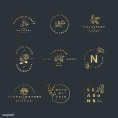 Set of botanical logo design vectors | free image by rawpixel.com / wan Plant Logos, Badge Design, Label Design, Branding Design, Resort Logo, Cafe Logo, Floral Logo, Logo Design Inspiration, Business Inspiration