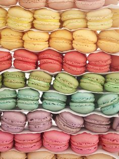 Sweet and colorful macarons