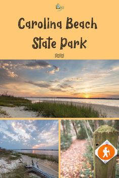 Carolina Beach State Park - RCI Plus Topsail Coastal North Carolina, North Carolina Beaches, Myrtle Beach State Park, Camping Spots, Rv Camping, Lanai Island, Where Is Bora Bora, Rv Parks And Campgrounds, Hiking Places