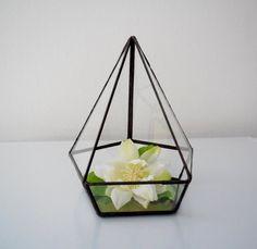 Terrarium clear glass planter modern industrial by jacquiesummer