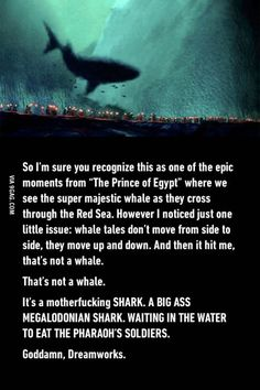 I actually knew it was a megaladon. <<the more you know