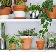 Vous en avez marre de voir toujours les mêmes pots en terre cuite dans votre jardin ? Égayez-les avec de la peinture. Inspirez-vous de vos motifs préférés et lancez-vous. Vous n'avez pas besoin de faire du travail d'artiste pour transformer vos pots. De simples dessins comme ceux de la photo donneront à votre jardin une touche de fantaisie !