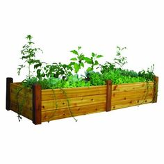 Gronomics RGBT 34-95S 34-Inch by 95-Inch by 19-Inch Raised Garden Bed, Finished by Gronomics. $389.00. Handcrafted in the u.s.a.. Tool-free assembly. Constructed from 100-percent Western Red Cedar. Food contact safe finish. Slides together in minutes. Raised Garden Beds are ideal for small plots of vegetables and/or flowers.  With these beds you eliminate tilling, soil amending, and minimize weeding.  They are quick and easy to assemble plant and maintain.  Easil...
