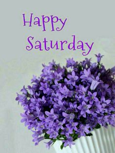 Good Morning Saturday, Happy Saturday, Just Saying Hi, Female Pictures, Morning Quotes, Beautiful Flowers, Night, Lady, Sweet