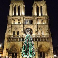 Cathédrale Notre-Dame de Paris 4th   1163. 96 m
