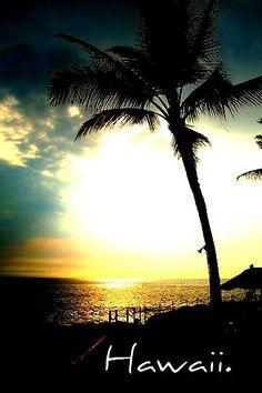 Hawaii palm tree sunset ideal vacation