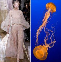 haute couture animal fashion 4