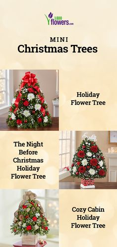 Perfect for any size space, our tabletop Christmas Trees are ready to celebrate the holidays! Add a live, mini Christmas Tree into your apartment, home or office, or send as a gift to friends & family. Tabletop Christmas Tree, Mini Christmas Tree, Christmas Flowers, White Christmas, Christmas Holidays, Flower Centerpieces, Flower Arrangements, The Night Before Christmas, Christmas Fashion