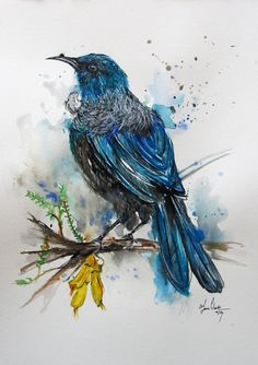 Tui Bird 2 by Fiona Clarke Watercolor Bird, Watercolor Paintings, Tui Bird, Doodle Images, Maori Designs, New Zealand Art, Nz Art, Maori Art, Kiwiana
