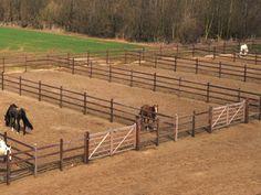 Paddocks Barn Stalls, Horse Stalls, Horse Farm Layout, Horse Pens, Horse Paddock, Cattle Barn, Horse Barn Designs, Horse Shelter, Horse Barn Plans