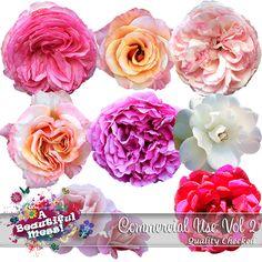 Roses CU Vol2