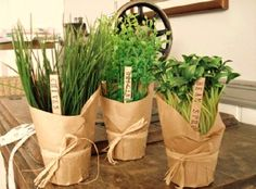 Herbs wrapped with kraft paper and twine.  great for kitchen window sill in summer.