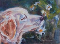 """Stop and Smell the Daisies"" - Original Fine Art for Sale - © Carol Demumbrum"