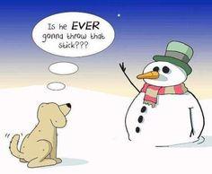 Christmas Jokes For Kids, Funny Christmas Cartoons, Christmas Doodles, Funny Christmas Cards, Christmas Humor, Christmas Things, Friday Cartoon, Cartoon Jokes, Super Funny