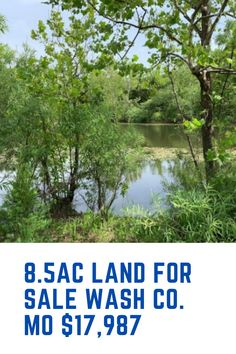 This is perfect residential land with electric, and with private lake access. Washington county, MO and just $17,987. Boom! Imagine coming home from work and getting the boat out and feeling all your worries disappear. Make sure your home is a sanctuary and somewhere you WANT to be.... Get in touch for location and more pics Washington County, Investing In Land, Safe Investments, Residential Land, Vacant Land, Little Cabin, Looking To Buy, Land For Sale
