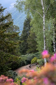 Diese schöne Rundwanderung führt uns von Carona auf der Landzunge Ceresio zum Monte San Salvatore und zurück. Ein weiteres Highlight ist der Abstecher zum Parco San Grato. Und natürlich ein Mittagessen in der Villa Carona. #ticinomoments #ausflugstipp #wandertipp