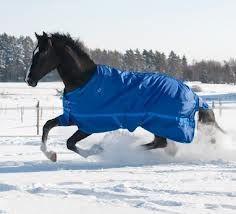 winterdeken zo blijft het paard in de winter lekker warm als die buiten staat