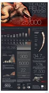 Image result for price of ivory graph