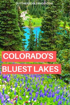 Discovering a high altitude alpine lake that also happens to be one of the brightest blues you'll ever see is truly unforgettable. With peaks like Mount Sneffels and Dallas Peak stretching 2,000 feet above you, the Blue Lakes Basin is one of the most scenic lakes in Colorado.  #OutThereColorado #ColoradoLakes #ColoradoHikes #ColoradoHiddenGems #ColoradoTrails #ColoradoBlueLakes Colorado Lakes, Visit Colorado, Colorado Hiking, Denver Colorado, Colorado Springs, Backpacking Trails, Hiking Trails, Leadville Colorado, Viajes