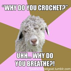 Oh my gosh, yes! Why do you crochet? What a silly question! http://fyeahcrochetgoat.tumblr.com/