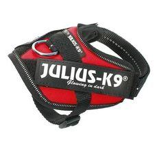 Julius K9 Power-valjaat