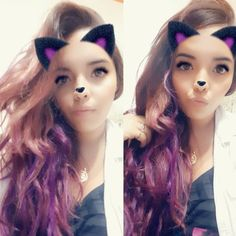 Purple cat Purple Cat, Cats, Gatos, Cat, Kitty, Kitty Cats