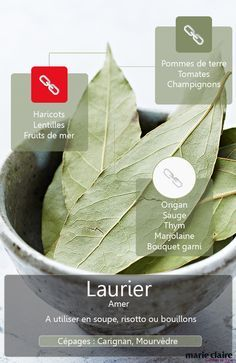 Le laurier fait des merveilles en cuisine, découvrez tout sur cette botte secrète ! Cooking Tips, Cooking Recipes, Healthy Recipes, Aromatic Herbs, Spices And Herbs, Food Science, Seasoning Mixes, Food Facts, Spice Things Up