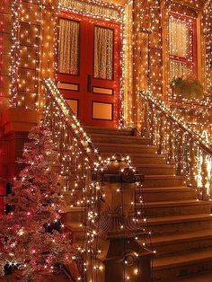 Outdoor Christmas Lights - Brooklyn, New York
