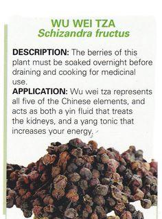Chinese herb - WU WEI TZA - Schizandra fructus