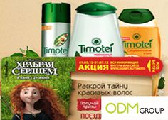 Brave movie merchandise   Brave & Timotei Promotion - Promotional Products. ODM Group